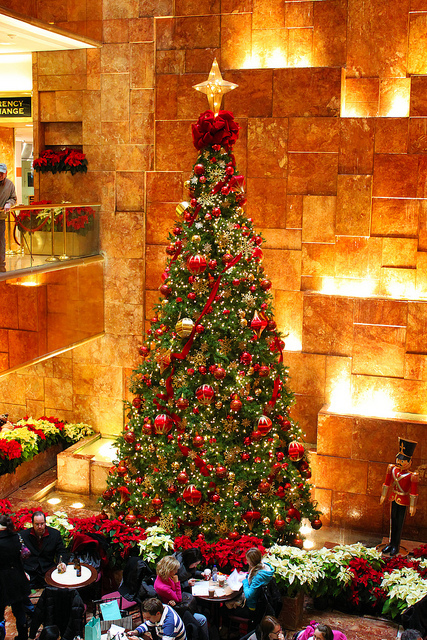 amazing, christmas tree, pretty