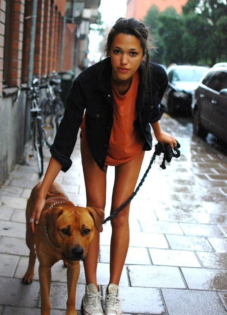 dogs are a girls - photo #26