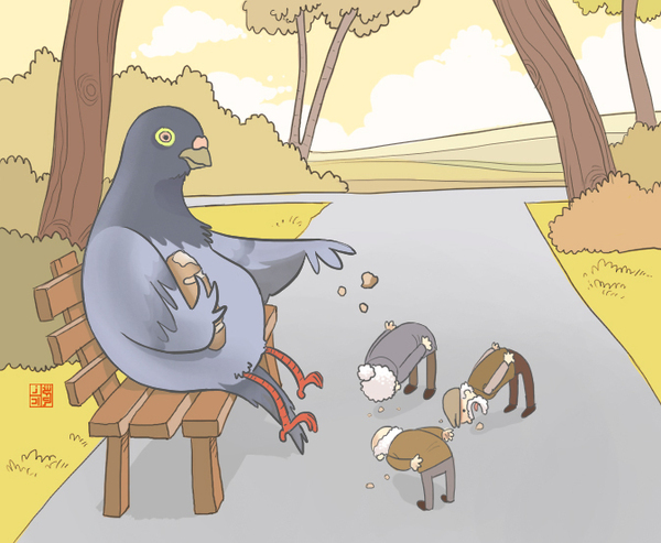 eating, funny, illustration, pidgeons, pigeon