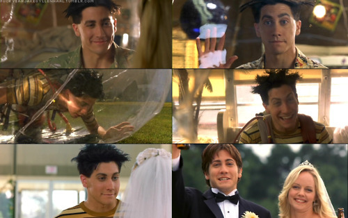 actors, bubble boy, jake gyllenhaal