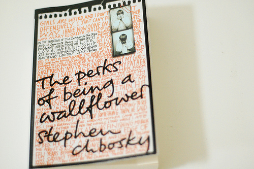 book, perks, wallflower