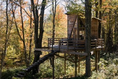 home, nature, pretty, treehouse, trees, windows