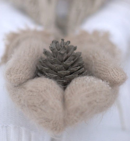 knit, mittens, pinecone, snow, white