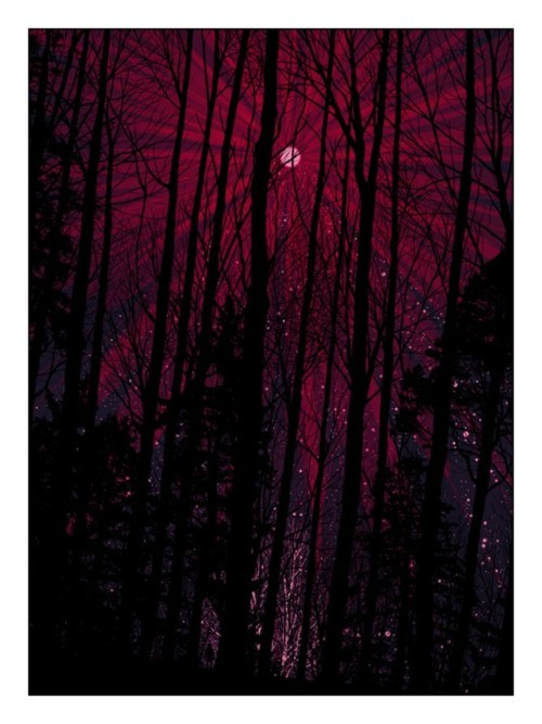 moon, night sky, pink, purple, sky, stars, trees