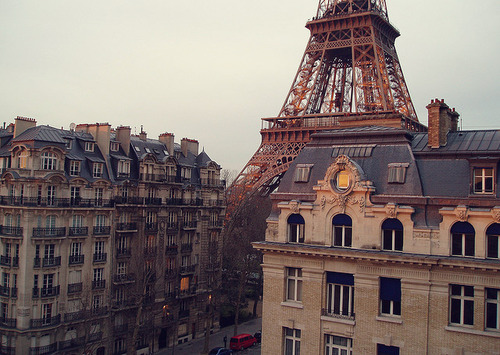 apartments, city, eiffel tower, france, paris