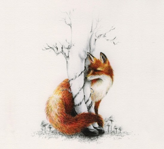 art, courtney brims, fox, legs