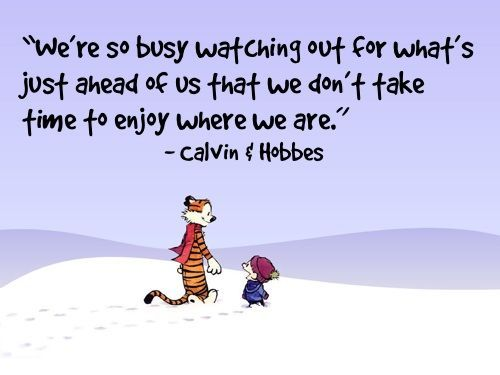 calvin & hobbes, cartoon, quote, text, typography
