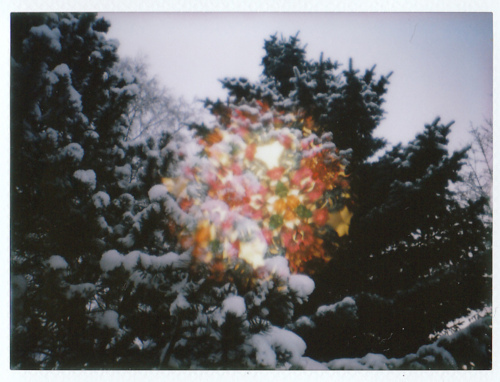 light, lights, lomography, nature, vintage