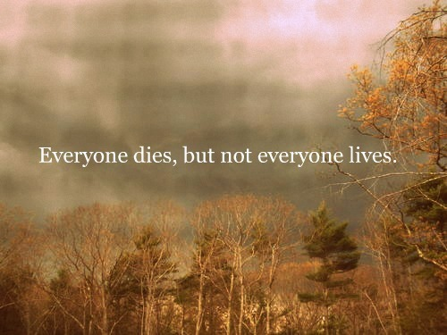 beautiful, dead, death, die, drake, everyone dies, field, forest, life, live, lyrics, nature, not everyone lives, photography, picture, quote, saying, text, tree, trees