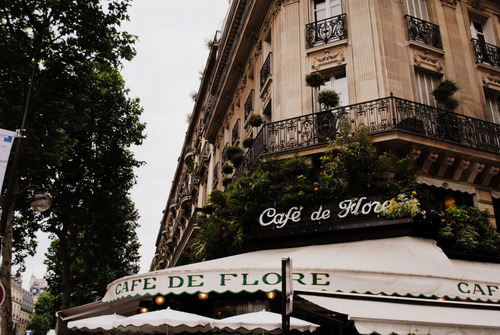 cafe, care, city, flowers, france, french, paris, streets, town