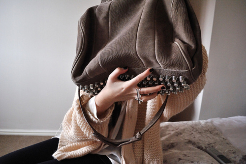 alexander wang, bad, bag, brown, designer