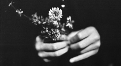 black and white, cute, flowers, hand, hands, love, photo, photography, pretty
