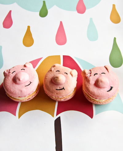 color, cute, food, macaron, pig
