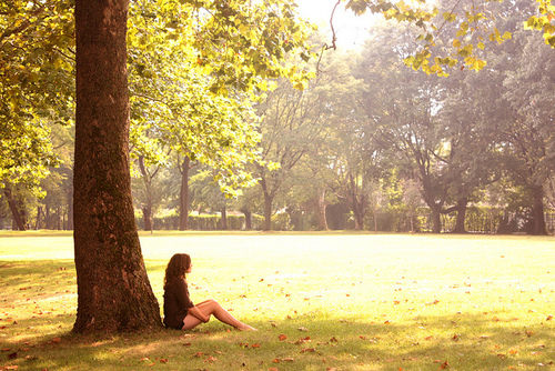 adventure, explore, girl, grass, nature, outdoors, outside, park, shade, sun, sunny, tree, trees, wander, wanderer
