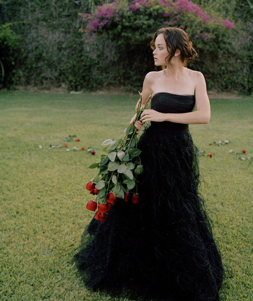 alexis bledel, dress, fashion, model, nature, rory gilmore, roses