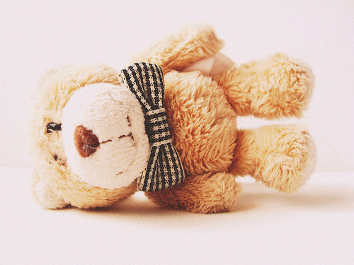 bear, cute, photography, ribbon, smile