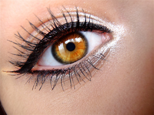beautiful, brown, cute, eye, eyeliner, eyes, ladylike, make up, mascara, sweet
