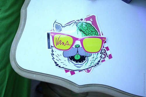 cat, dropdead, sticker, vans