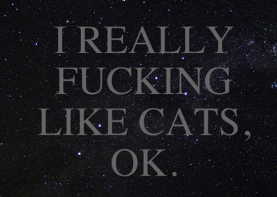 cats, cute, hipster, love, space