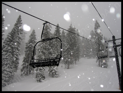 chair lift, pine trees, pinetrees, scenery, ski lift, snow, snow falling, winter