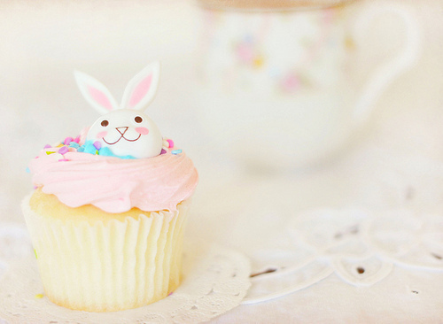cupcake, cute, eat!, food