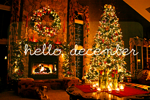 christmas, december, happiness and hope