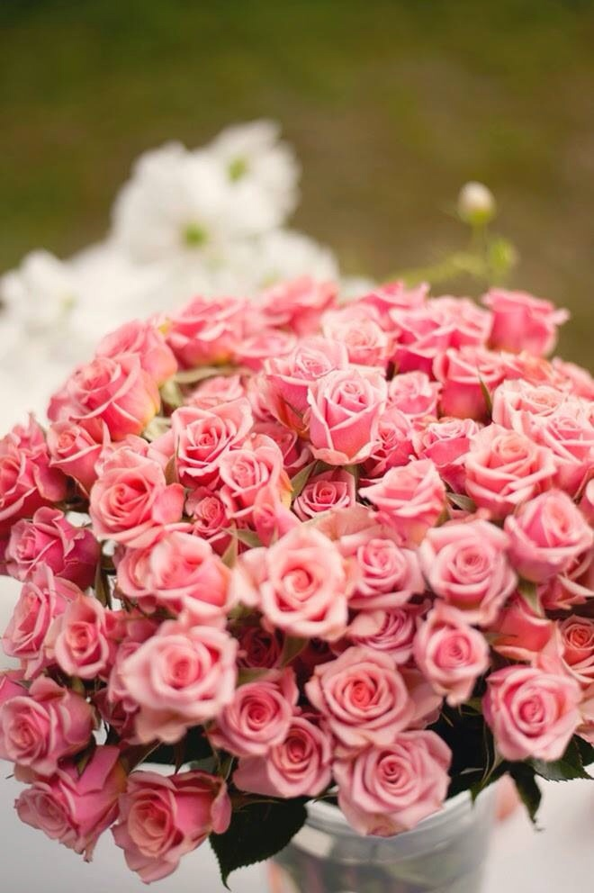 bunch, floral, flowers and pink