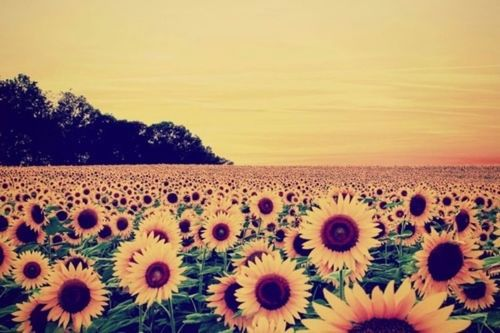 Untitled Image 2264840 By Ksenia L On Favim Com