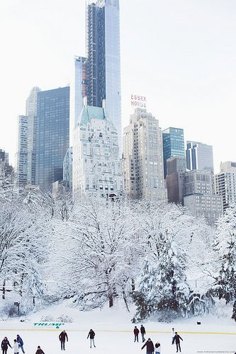 Beautiful christmas cold weather december holydays for Traveling to new york in december