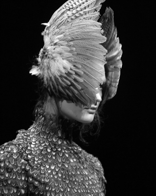 alexander mcqueen, catwalk, couture, haute couture, head, model, runway, wings