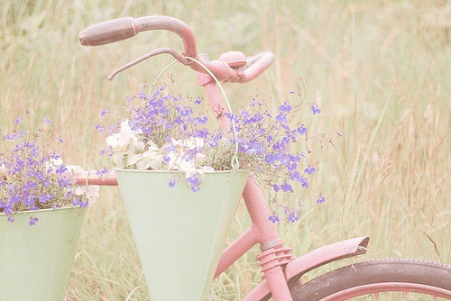bike, flowers, photography, pink, pretty - image #188845 ...