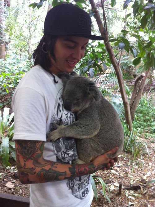boy, cute, gauges, hat, koala bear, photo, pierce the veil, ptv, tattoos, tony perry