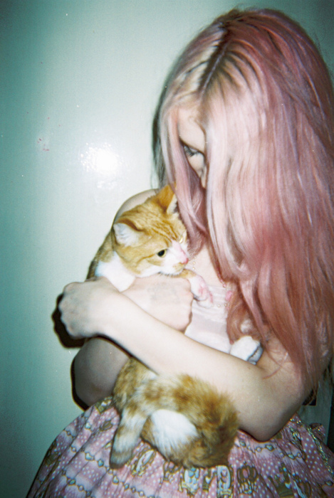 cat, hair, orange cat, pastel, pastel hair, pink, pink hair, secret twin