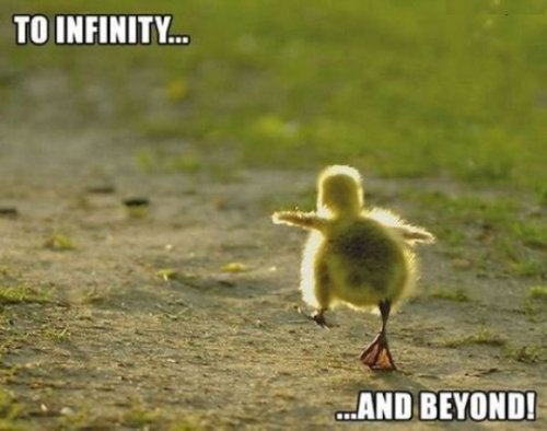cute, duck, infinity and beyond