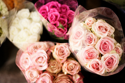 cute, flowers, girly, love, nature, pink, romantic, roses