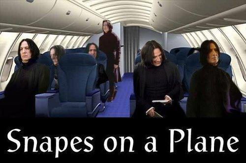 funny, harry potter, lol, plane, snape