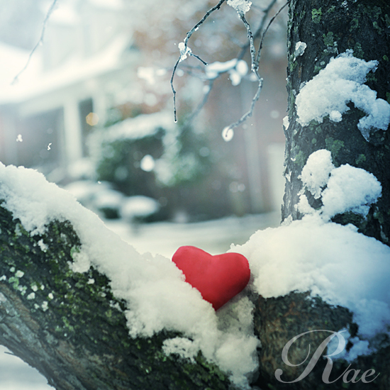 Heart Snow Love Quotes