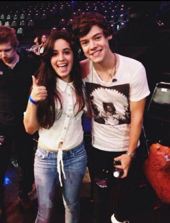 is harry styles dating camila from fifth harmony