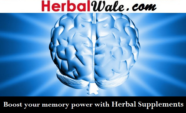 does coconut oil help memory loss