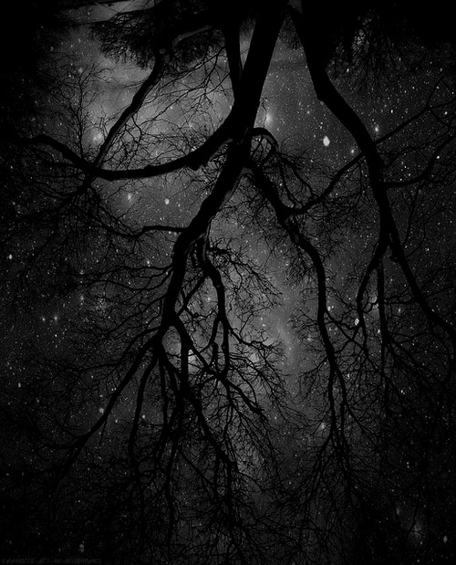 background beautiful black and white nature sky stars