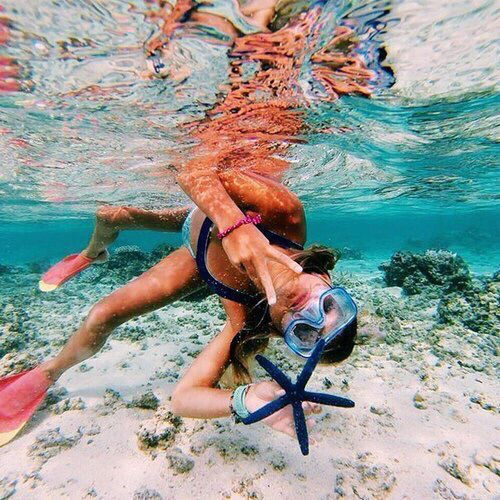 blue, dive, diving, fish, fun, girl, ground, sand, skin, star, starfish, summer, sun, tan, under, underwater, water, skindiving