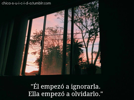 chicas, frases, frases en español and love