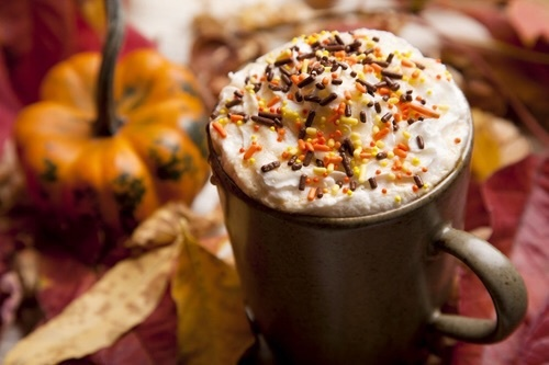 autumn, coffee, cold weather, hot drinks, pumpkin, tea, hot chocolate ...