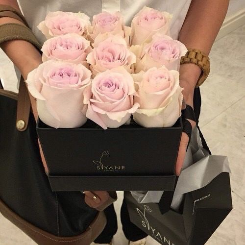 classy, glamorous, roses and rosy