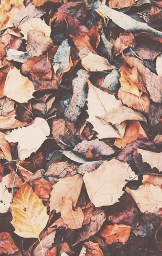 October September Tumblr Vintage Tumblr Fall Wallpaper
