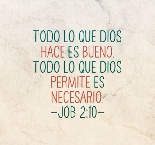 Amor Dios Frases God Love Notas Image 3015079 By