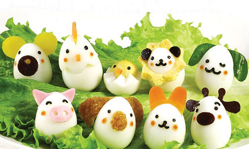 animal, bento, cooking, egg, food
