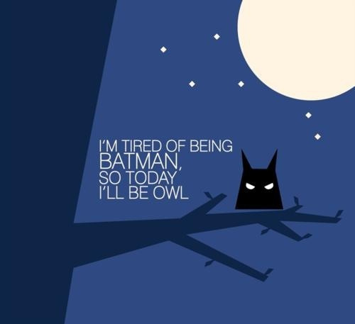 batman, black, cute, funny, moon, night, owl, text