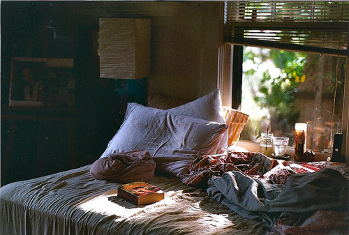 bed, book, comfy, lazy, photo