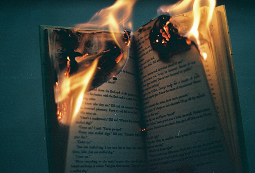 book, burn, fire, flames